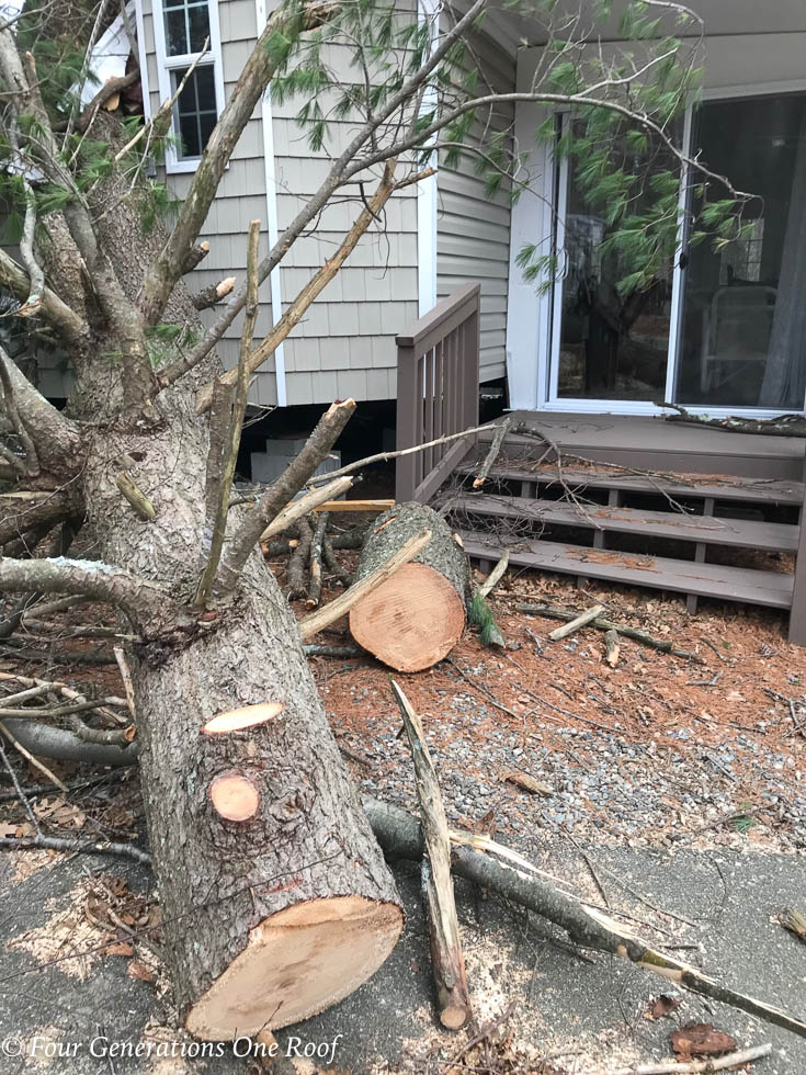 Sad News About My Parents Camp at the Lake | 2018 Nor'Easter in Massachusetts destroyed a Park Model Home
