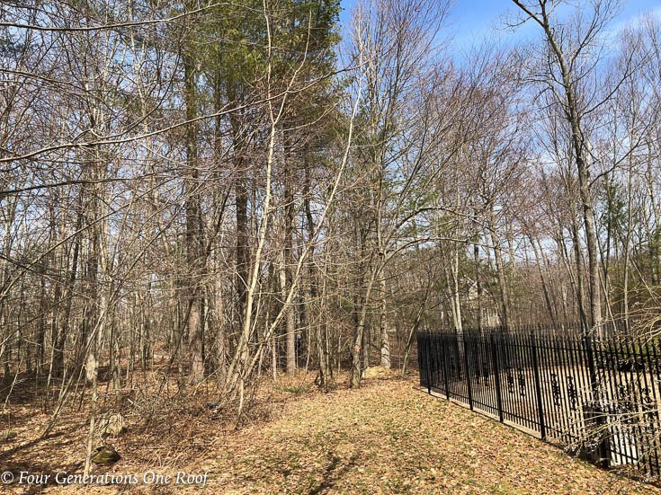 Exposing New England Stone Walls + Our massive yard landscaping project