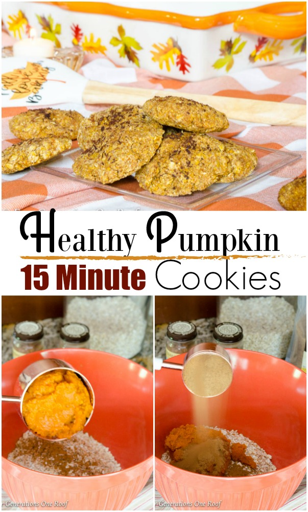 Quick Bake Pumpkin Oatmeal Brown Cookie Recipe   15 Minute Coconut Sugar Pumpkin Oatmeal Cookie Recipe