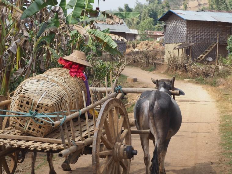 Pa-O Village, Myanmar