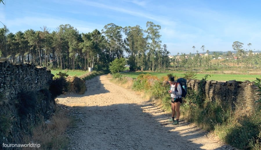 except from the flight, the camino de santiago cost for transportation will be low