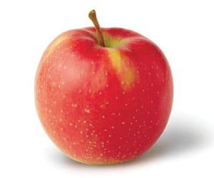 Apple-Jonagold