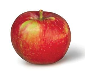 Apple-Paula-Red