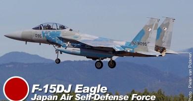 F-15DJ – 92-8095 – Hiko Kyodotai – Japon – JASDF – 2012