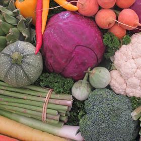 Vegetables_-8218132751340780350