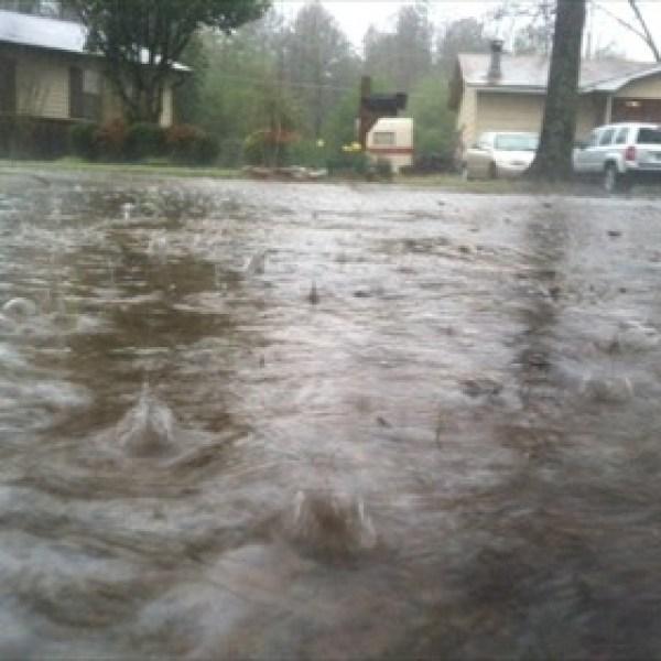Jacksonville Rain_-7608084262516537501