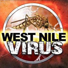 West Nile Virus_-5570506264044417529