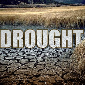 Drought_5972423387938309680