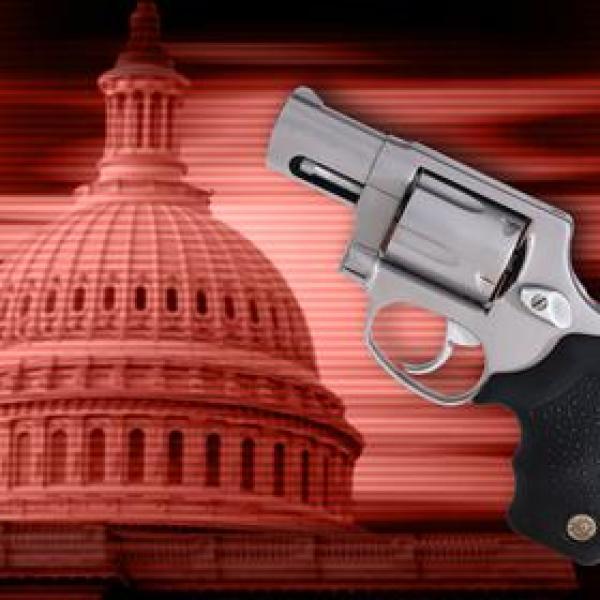 Gun Rights_4295938058045899261