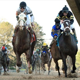 Will Take Charge_4782556153611111295