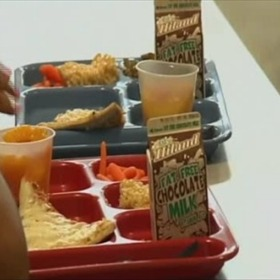 School Lunches _-5248659402611994842