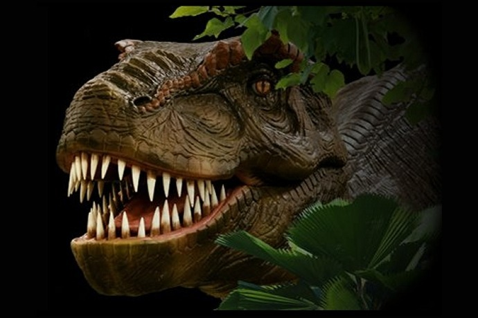 Discover the Dinosaurs_1714853790239572298