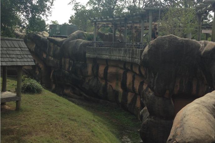 Jaguar Exhibit LR Zoo_-7601554900559902040