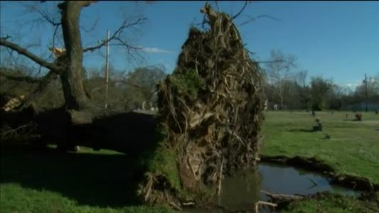 Storm Damage in Russellville_9120409480082771199