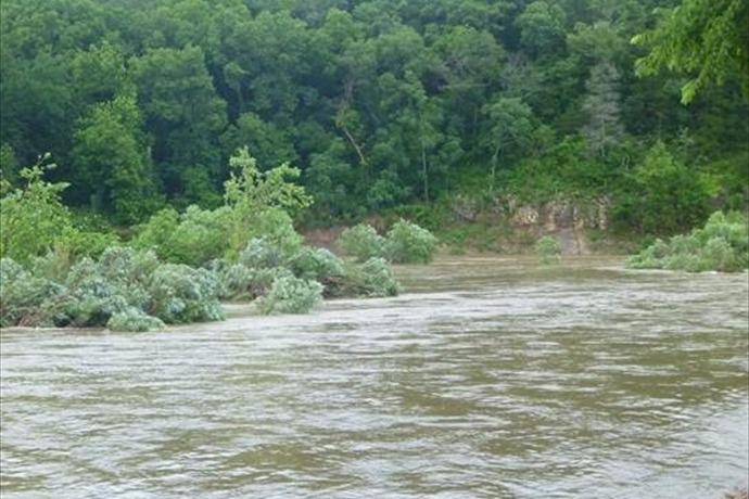 The Buffalo River at Grinders Ferry as of 9 am, June 20, 2015._5974475493870878777