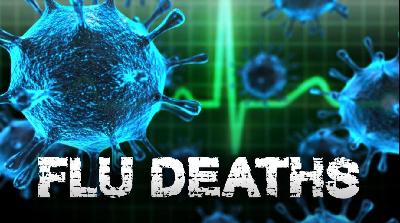 Flu Deaths generic_1554239040085.JPG.jpg