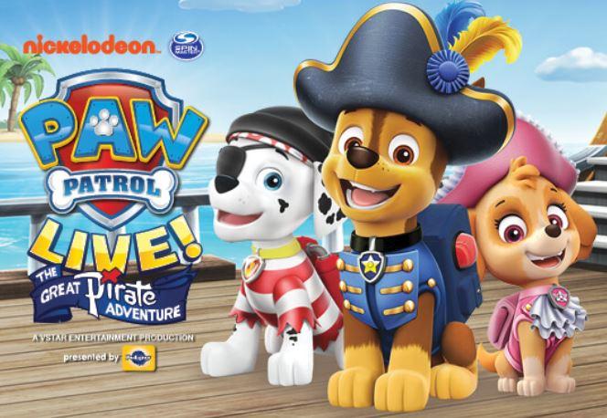Paw Patrol Pirate_1557253306259.JPG.jpg