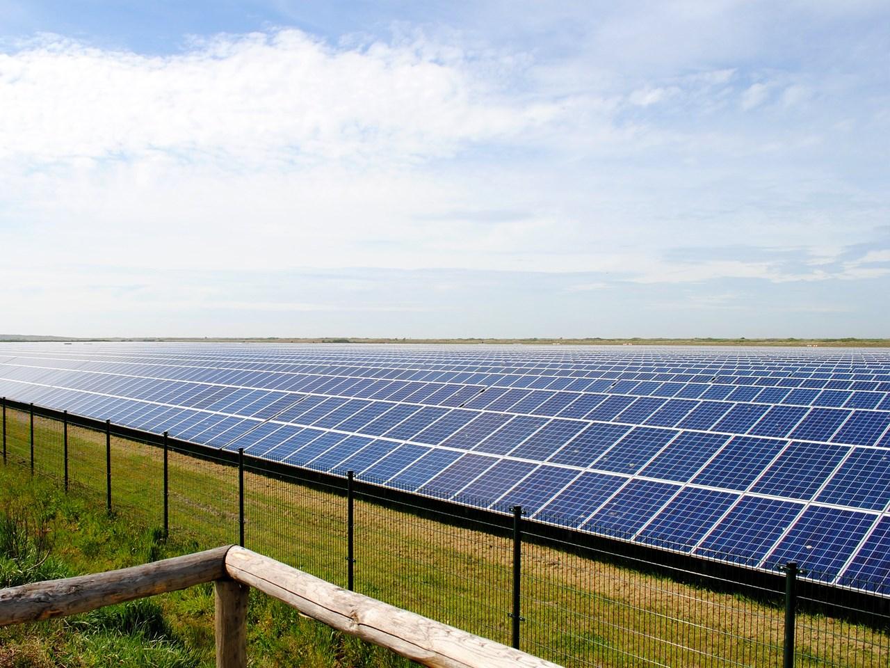 solar panel farm energy.jpg