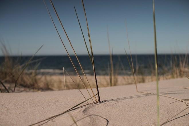 Break Photography Ostsee Beach Sea Sand Calm Vacation
