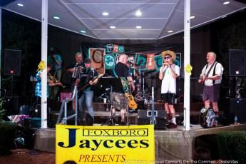2015-concerts-09-Gobshites-0000