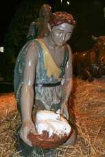 completed-nativity-010
