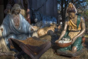 completed-nativity-035