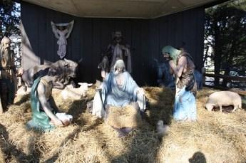 2010-christmas-nativity-30