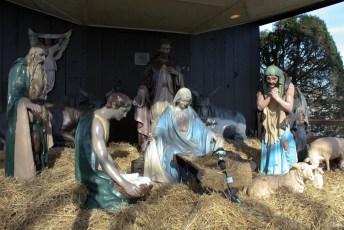 2011-christmas-nativity-14