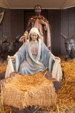 2015-nativity-setup-001