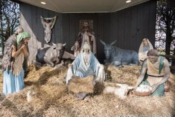 2016-nativity-setup-0001
