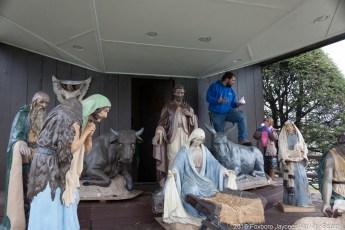 2016-nativity-setup-0008