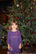 2014-jaycee-christmas-kids-party-060