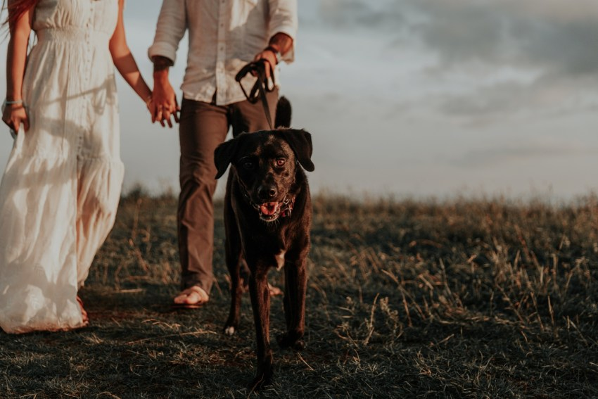adventure elopement and wedding photographer