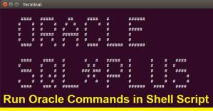 Execute Oracle Commands in Linux.