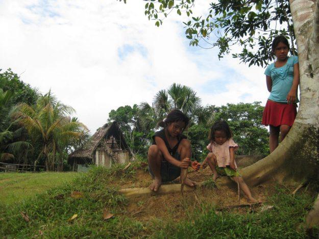 Travel to the Peruvian Amazon - farm