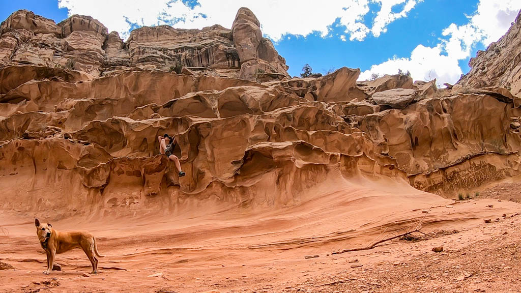 best desert camping tips