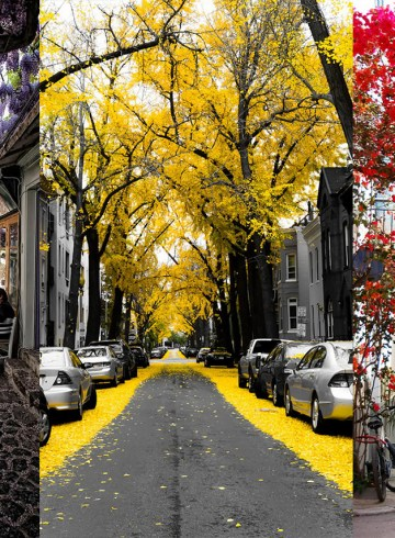 amazing streets around the world