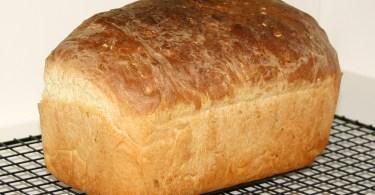 breadwinner poverty