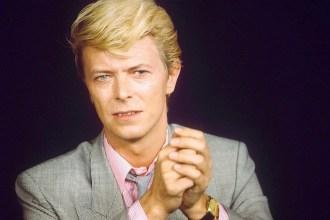 Bowie, l'artiste entrepreneur par excellence   /100574b//1302051537