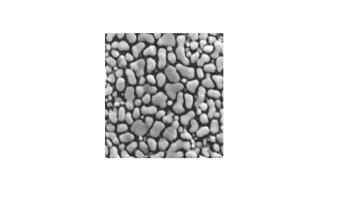 Medium Resolution Gold (0.1μm – 1μm) on Carbon Test