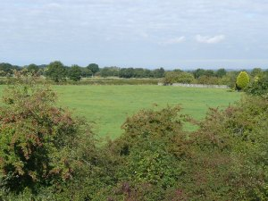 Brookfield site - 70 houses planned here