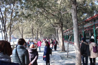 china-urlaub-erfahrungen-peking-kaiserlicher-himmelspalast-wanfuijing-gasse-22