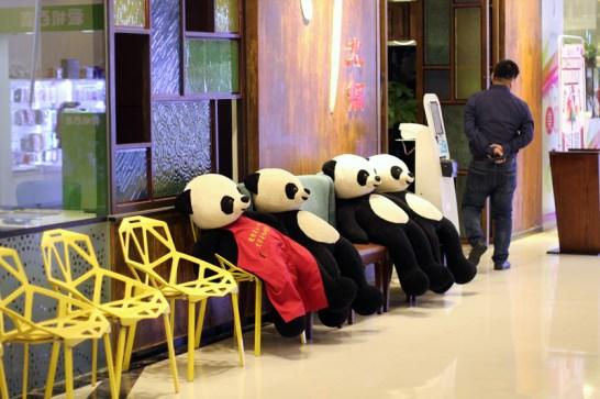 china-urlaub-erfahrungen-beijing-cooking-school-114