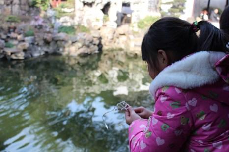 china-urlaub-erfahrungen-shanghai-schnellzug-Yuyan-Garten-stadtgotttempel-27