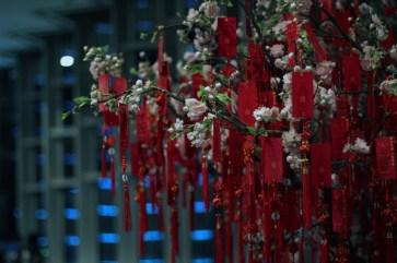 china-urlaub-erfahrungen-shanghai-schnellzug-Yuyan-Garten-stadtgotttempel-97