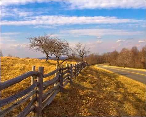 Tuggles Gap ~ Blue Ridge Parkway