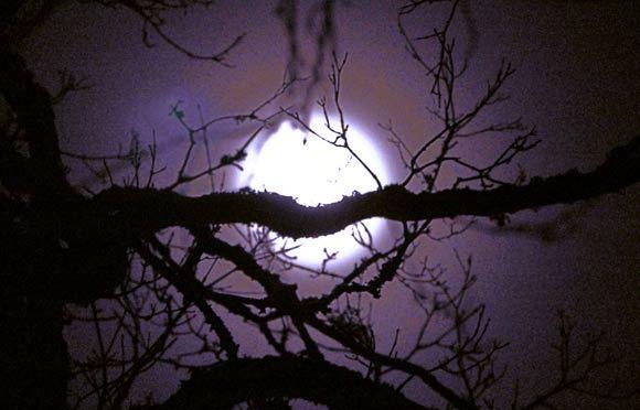 dec_moon580