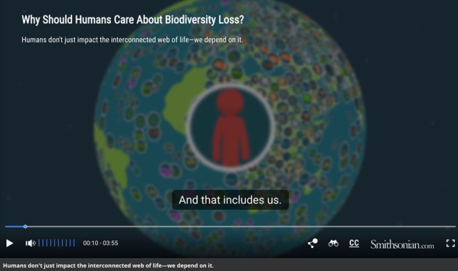 http://www.smithsonianmag.com/science-nature/video-why-should-humans-care-about-biodiversity-loss-180961708/