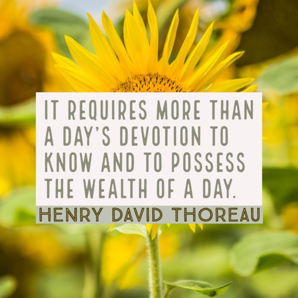 It requires more than a day's devotion to know and to possess the wealth of a day.