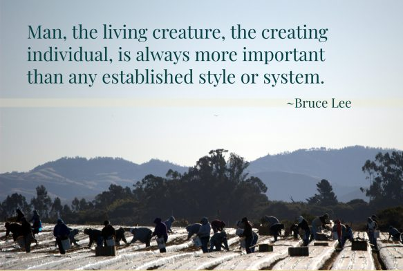 Man, the living creature, the creating individual, is always more important than any established style or system.
